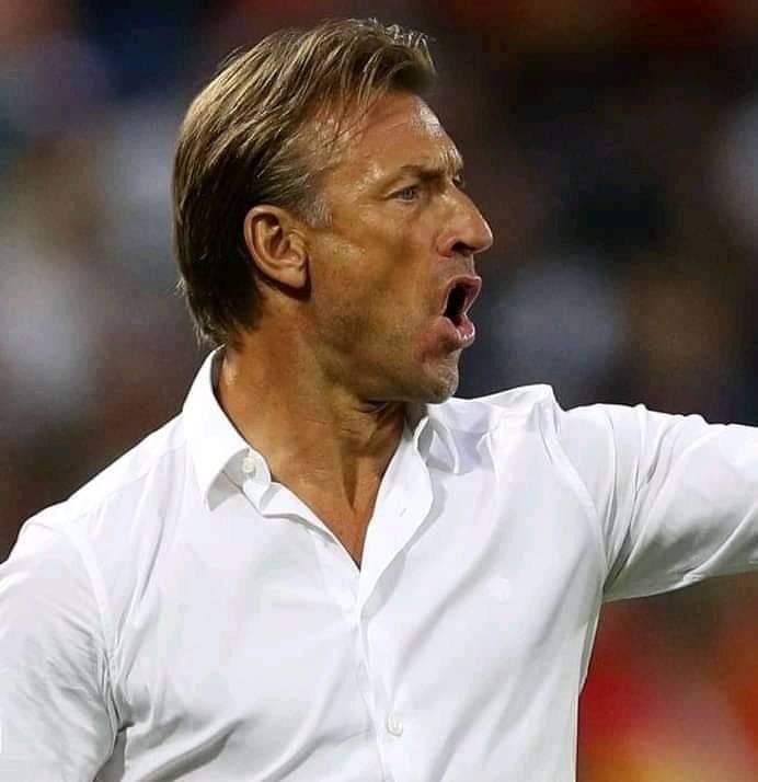 Football : Hervé Renard démissionne