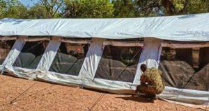 Une tente dressée par l'armée Burkinabè à Kantchari dans l'est du pays pour permettre aux élèves des écoles primaires délocalisées de poursuivre les cours