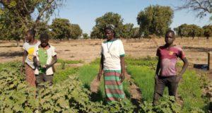 jardinage pour promouvoir la cohésion sociale à Fada N'Gourma